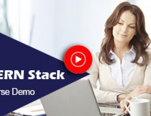 MERN Stack Development Training